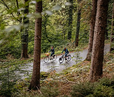 Zwei Radfahrer fahren auf einer Straße, die durch einen Wald führt